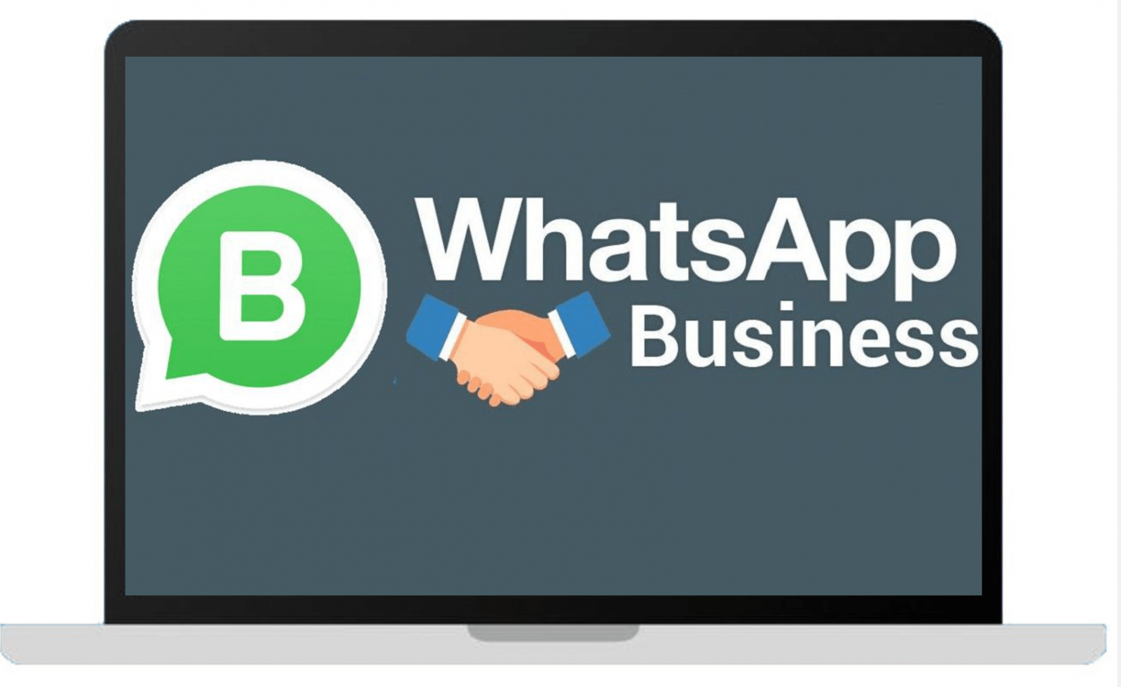 Marketing con WhatsApp business.