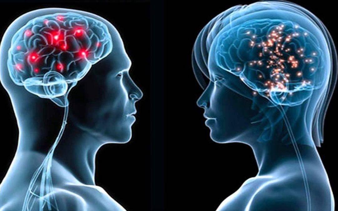 21 minutos para hablar al cerebro de tu cliente.